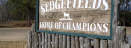 Sedgefields Plantation
